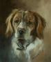 Gun Dog Portrait - Commissions