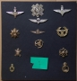 COLLECTION OF CAP BADGES PARAS AND OTHERS - reserved